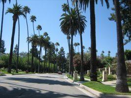 Beverly_Hills11