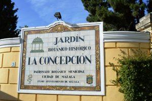 4Disa Travel Condetta Malaga