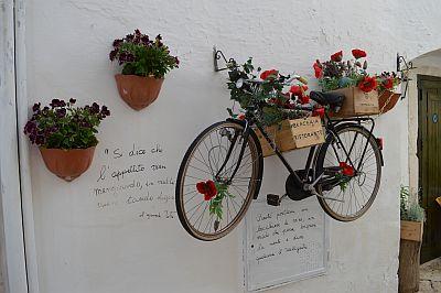 Selectair 4Disa Travel Puglia