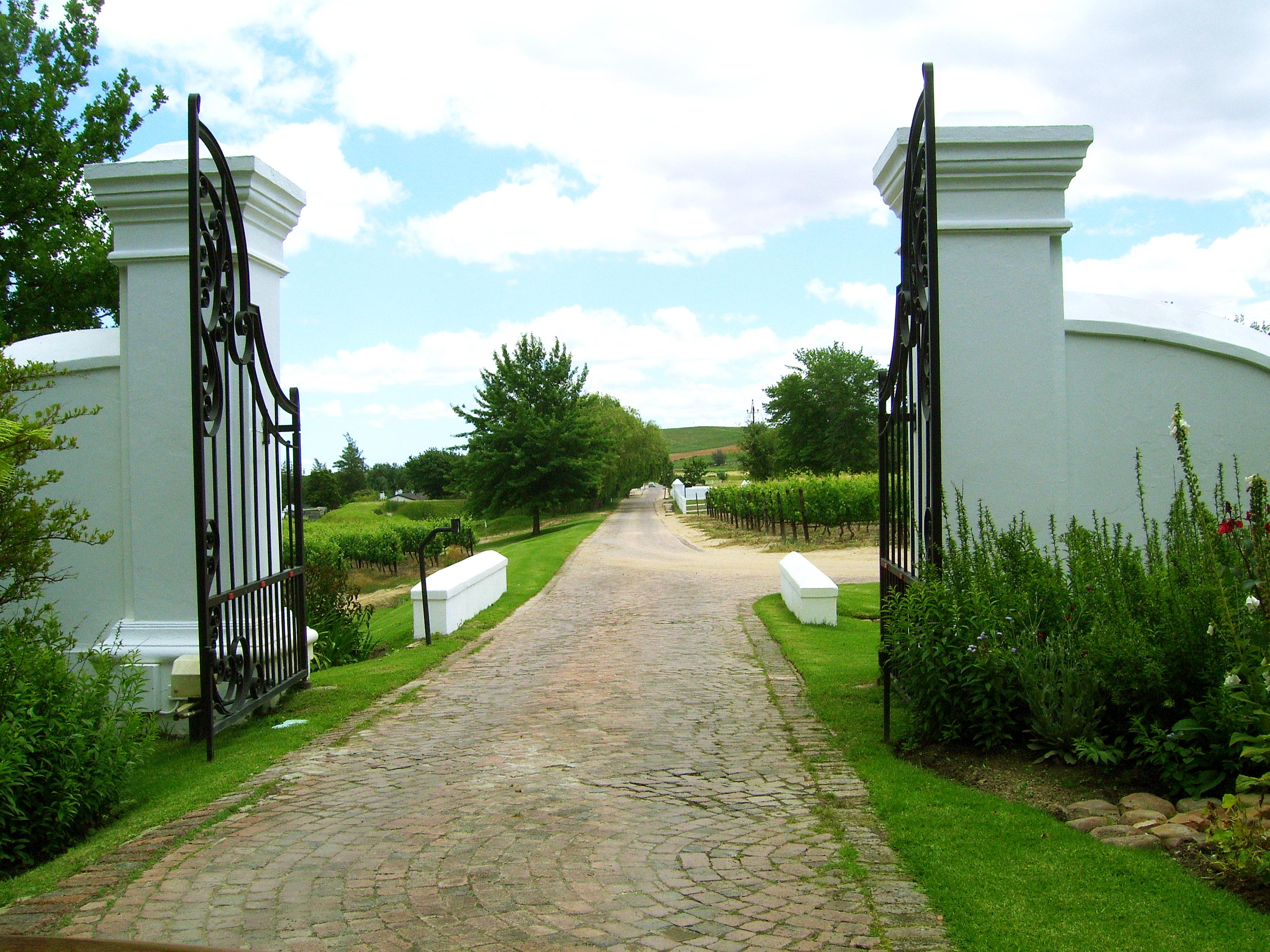 Cape Town 2011 204
