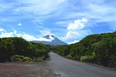 4disa travel selectair azoren pico