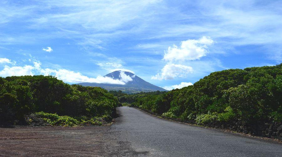 4Disa Travel Condetta Azoren Pico