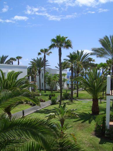 4Disa Travel Condetta Gran Canaria