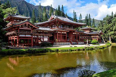 Selectair 4Disa Travel Japan