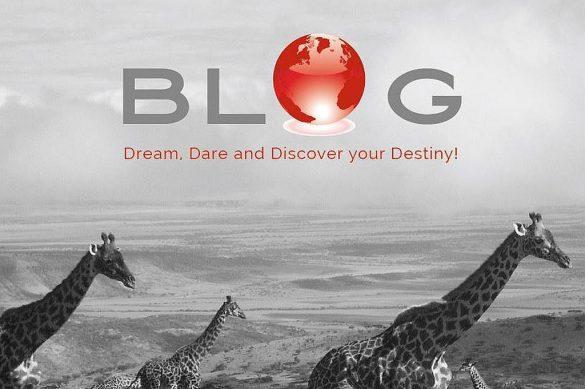 Selectair 4Disa Travel Blog