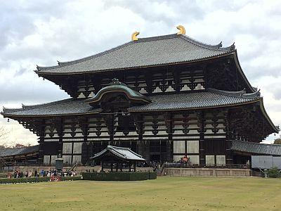 Selectair 4Disa Travel Blog Japan