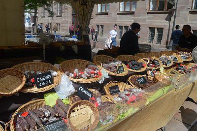 Selectair 4Disa Travel Blog Straatsburg Strasbourg
